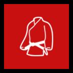 private martial arts lesson